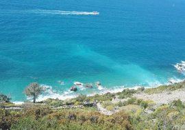 Wild beaches: Punta Persico