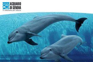 biosfera-acquario-genova