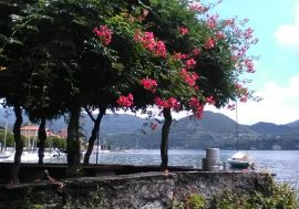 Pella: historical and natural beauty on Lake Orta