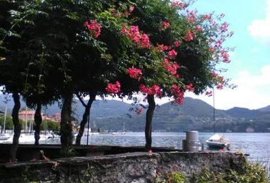 Cosa vedere a Pella: una bellezza paesaggistica sul Lago d'Orta
