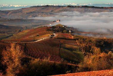 Inno all'autunno nelle cantine di Barolo: il grande vino italiano