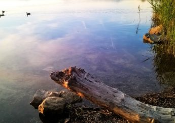 Il Lago di Monate e le sue spiagge