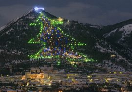 Guinness World Record: the Largest Christmas Tree in Gubbio