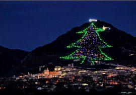 L'albero di Natale più alto del mondo a Gubbio