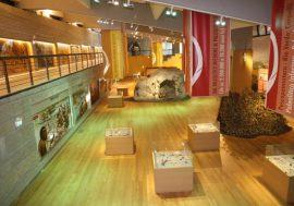 Il Museo Paleolitico di Isernia in Molise