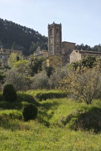 camelie-lucca-mostra-chiesa