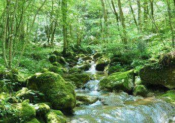 The Natisone Valleys of Friuli