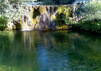 WWF Guardiaregia-Campochiaro Oasis