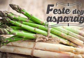 Festa degli Asparagi 2018: Diversi appuntamenti in Friuli