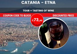 Private Guided Tour of Etna
