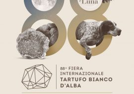 International White Truffle Fair of Alba