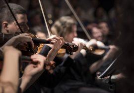 50esima stagione concertistica a Campobasso
