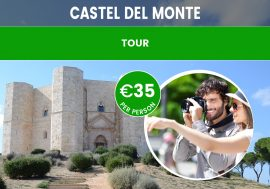 Guided Tour of Castel del Monte