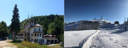 Pet-holidays-in-northern-Italy-dooid