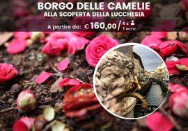 Borgo delle camelie: alla scoperta dell'arte e degli eventi della Lucchesia