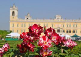 Mostra mercato del giardinaggio di qualità a Parma