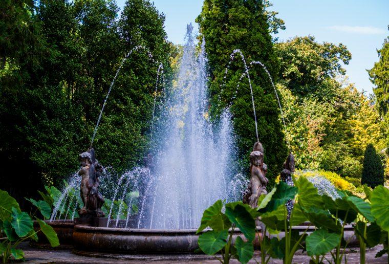 Villa Taranto: Una gita ai Giardini Botanici sul Lago Maggiore