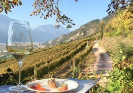 DiVin October: an Entire Month of Events in Trentino