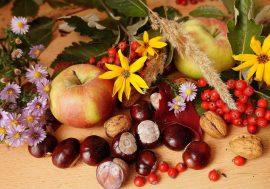 Sagra del Marrone: Palazzuolo sul Senio in autunno