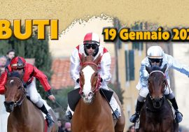 The Palio Horse Race in Buti in the Pisa Province