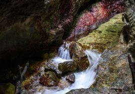 Il Canyon Rio Sass in Val di Non