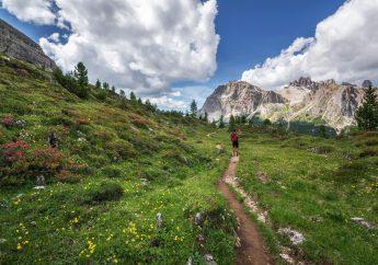 Strada del Vino: Esperienze da vivere a Trento